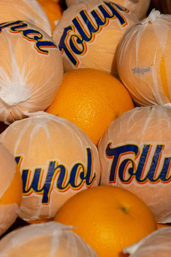 Naranjas de mesa Tollupol